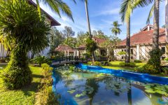 amora-beach-resort-phuket-otzyvy_ (38)