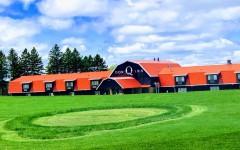 The Donn Q Inn